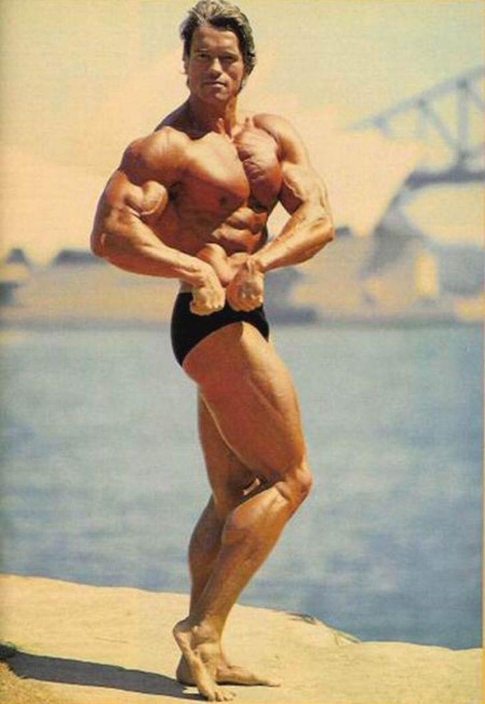 Arnold Schwarzenegger 705x1024