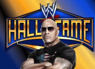Next 5 WWE Hall of Fame Headliners 1 324x235