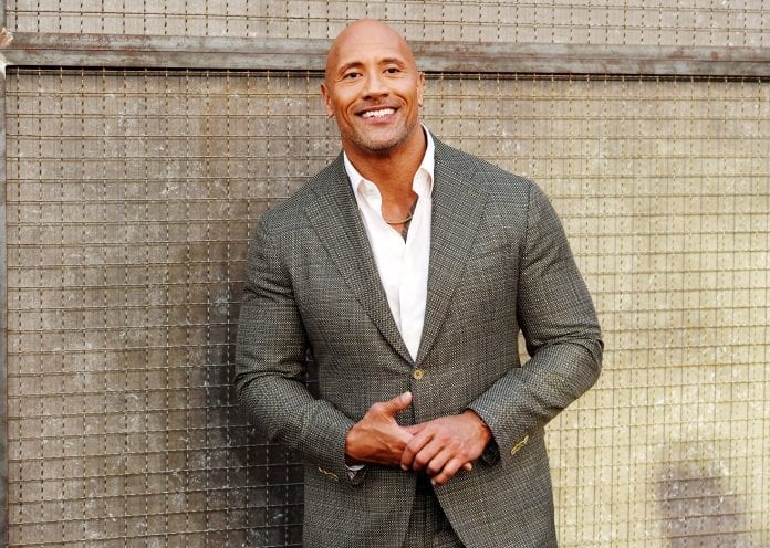 The Rock 696x496