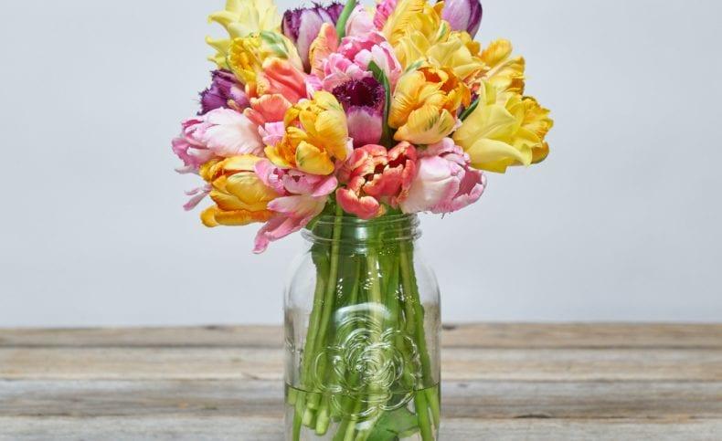 floral preservatives 790x483