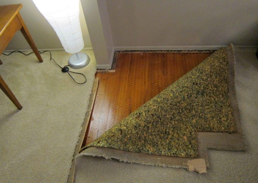 Wood carpet 1 850x602