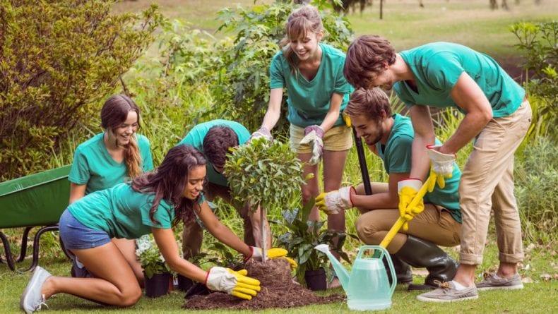 voluntary work 790x445