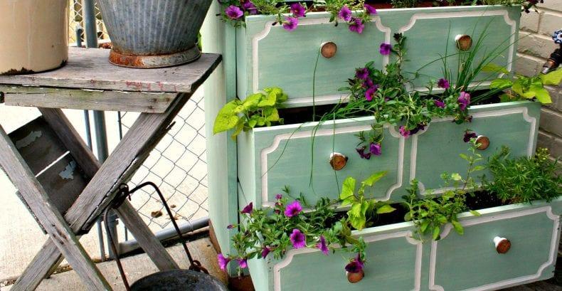 DIY and Gardening 790x409