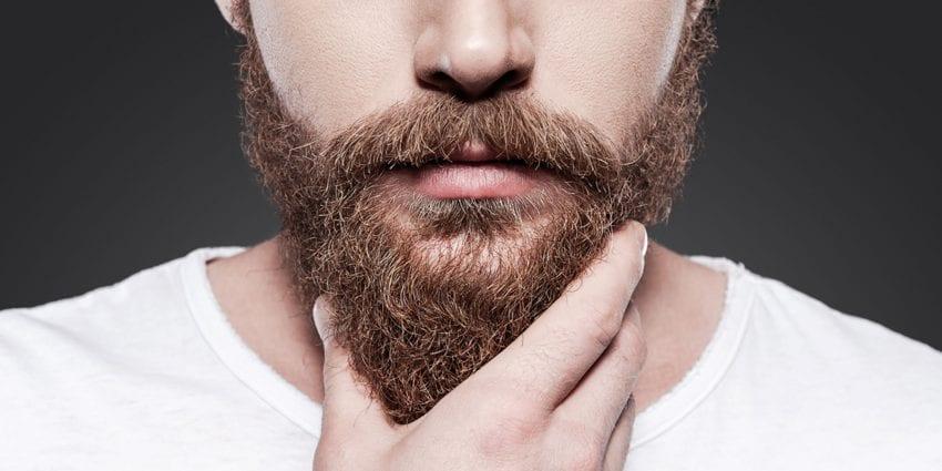 beard 1 850x425