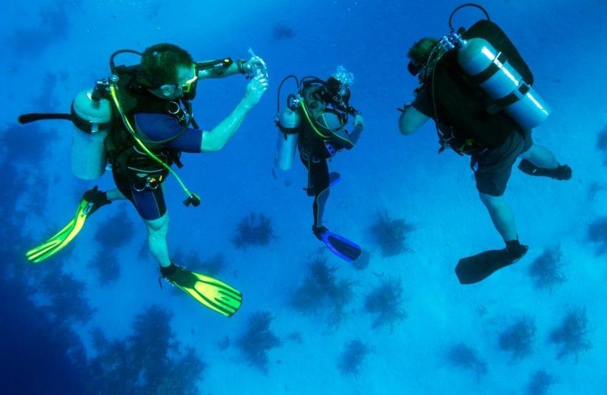 divers 850x553