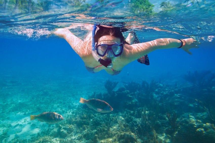 snorkel 850x567