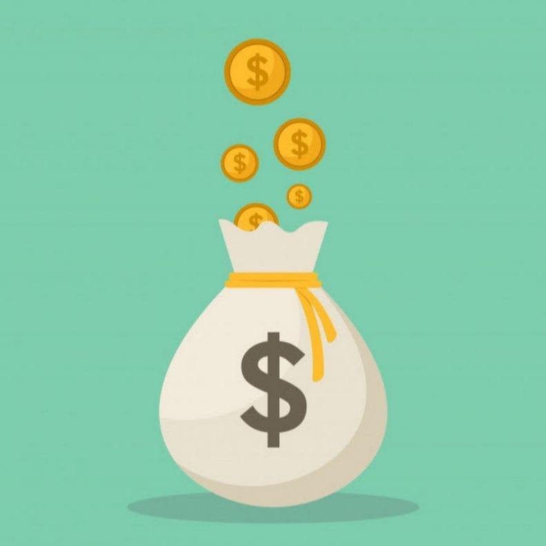 Money Bag 790x790