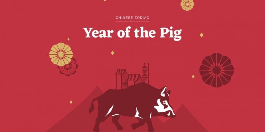 pig year 850x425