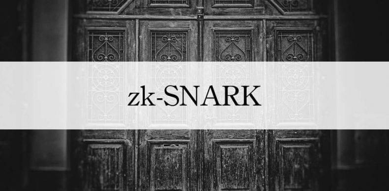 ZK Snark 790x387