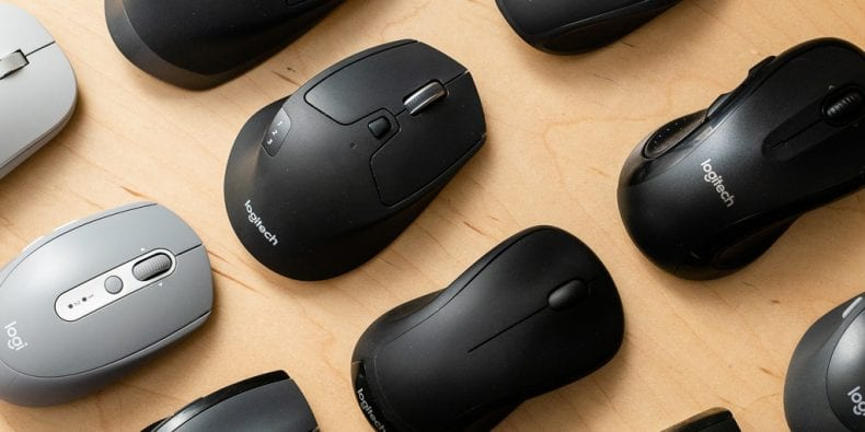 Great Mouse 790x395