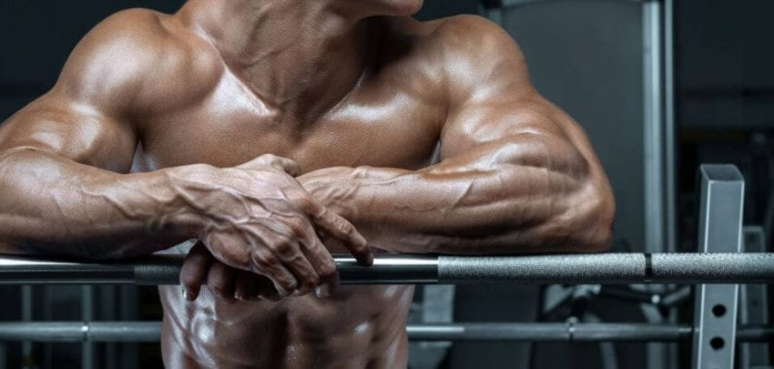 muscle hypertrophy 850x405
