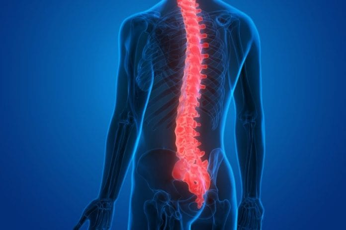 When To Hire A Lawyer For Your Back Injury
