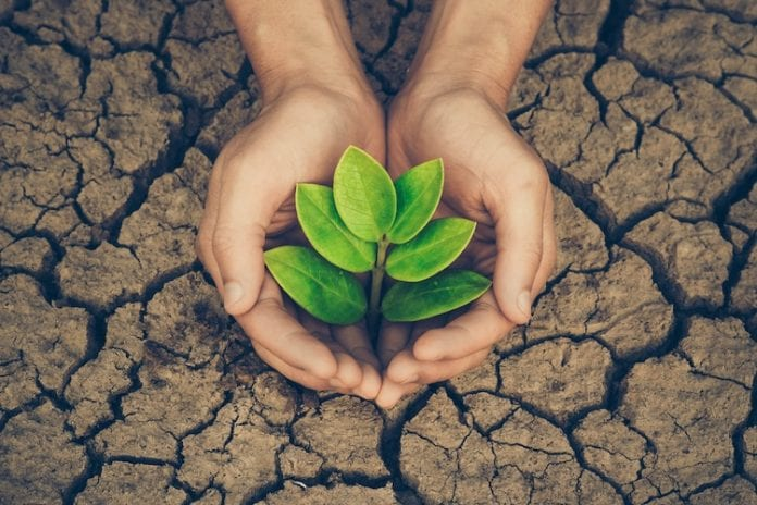 18 Simple Things All Of Us Can Do To Help The Environment | Opptrends 2021